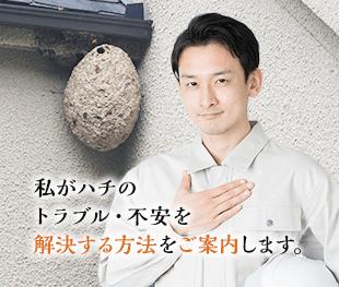私がハチのトラブル・不安を解決する方法をご案内します。